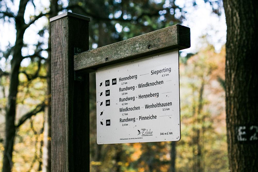 Sauerland-Wald-Spaziergang-Eslohe-Hochzeitsfotografie-Bochum-3.jpg