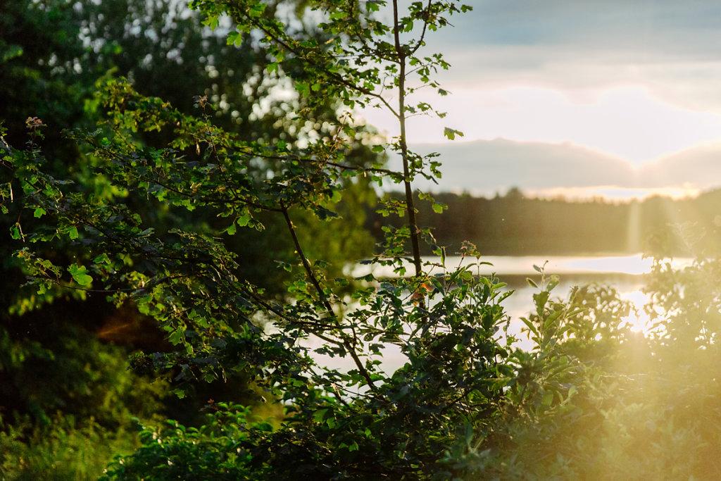 mh-hochzeitsfotografie-verlobung-im-gruenen-botropp-47.jpg